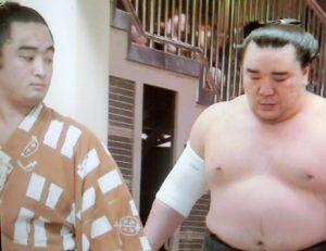 照ノ花と日馬富士