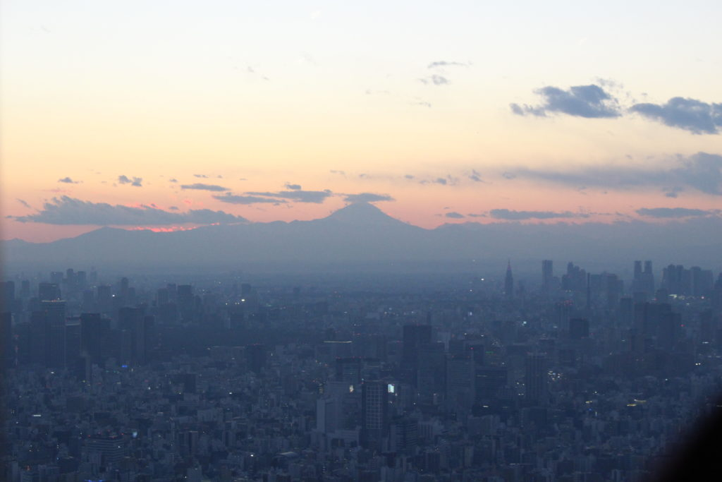スカイツリーから見た富士山