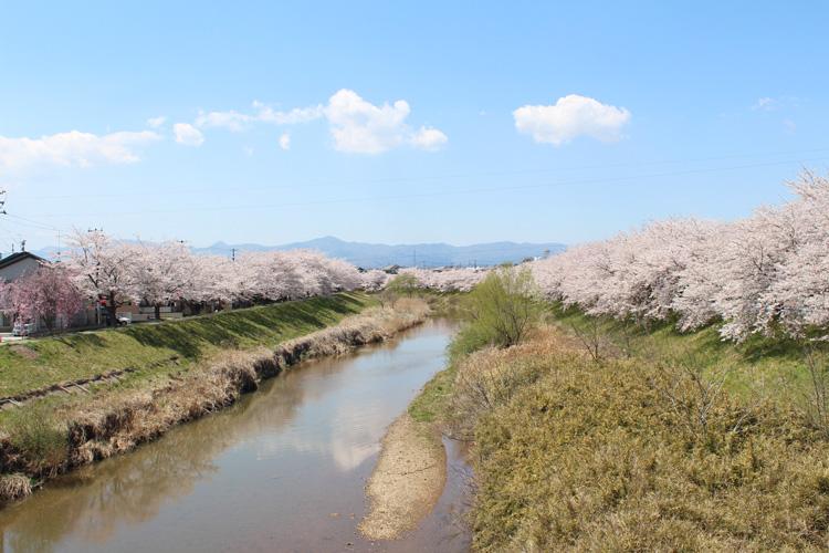 笹原川(安積町荒井付近)