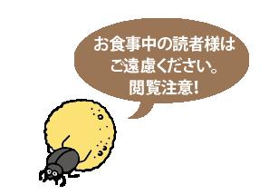 腸活web201805_閲覧注意