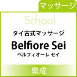 school_banner-Belfiore Sei
