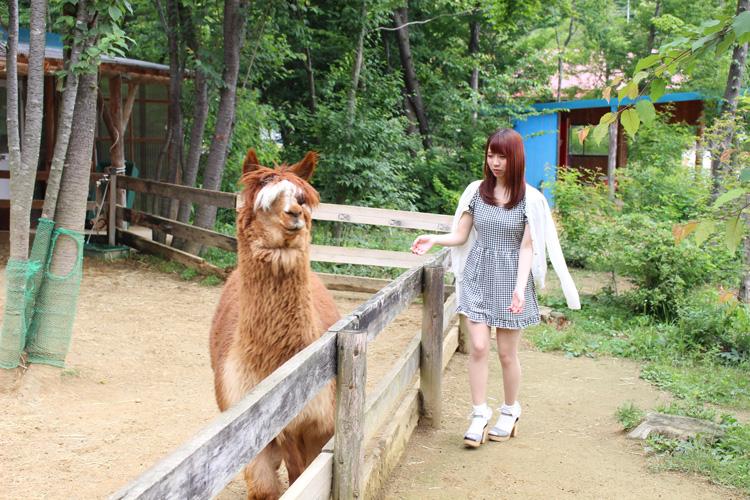 Nonbiri Onsen (Annex Iwana no Sato / Alpaca Farm)
