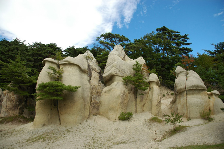 浄土松公園きのこ岩