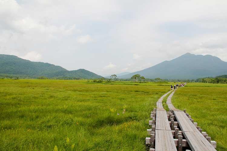 尾瀬(国立公園)