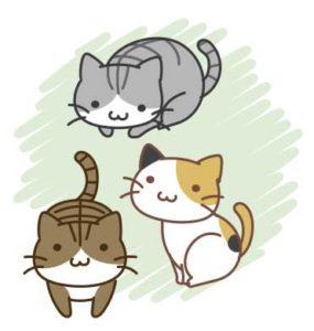 保護猫コラム