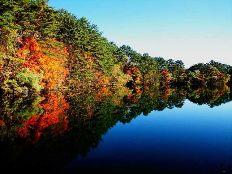 五色沼湖沼群 紅葉