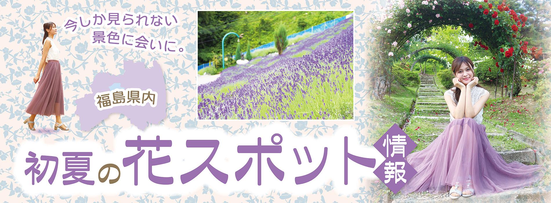 初夏の花スポット2021